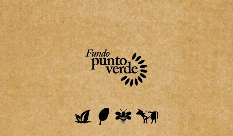 Fundo PuntoVerde, Chillán